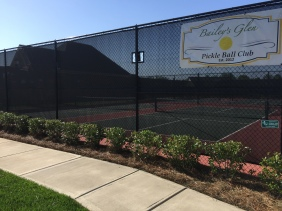 5 Professional Courts